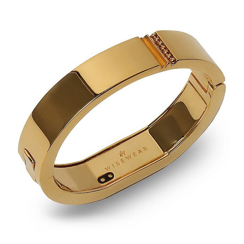 WiseWear Kingston smart bracelet